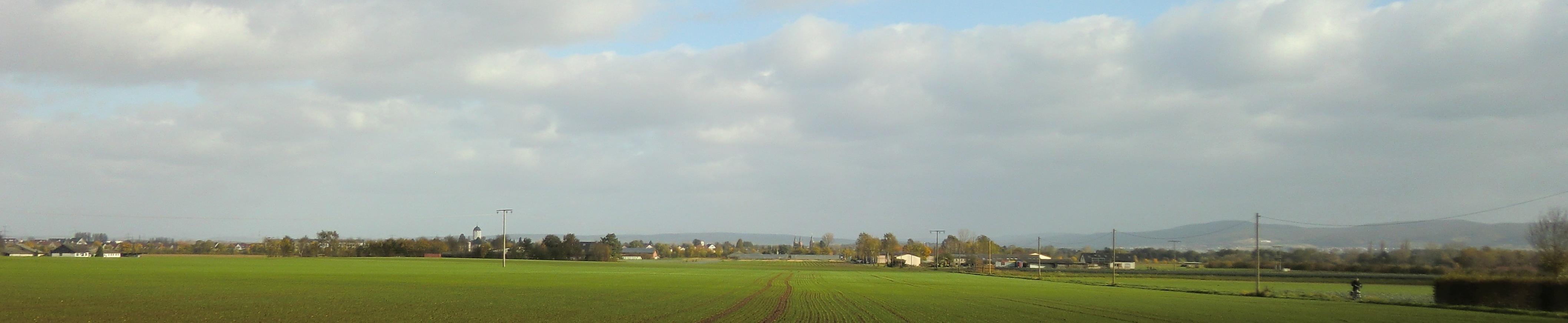 Panorama Seligenstadts
