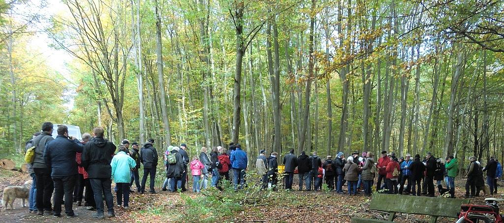 Grenzgang 2017: Frischen Most und Brezel im Wald